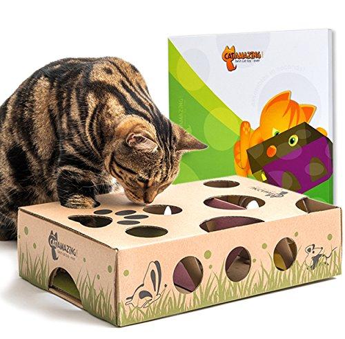 Cat Toy Puzzlebox Amazin