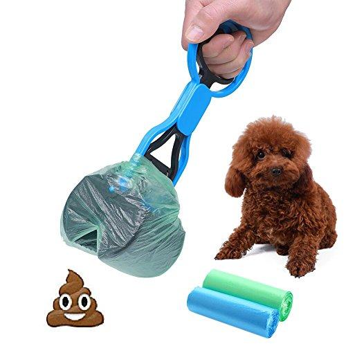 Pick Of The Litter Dog Breeding